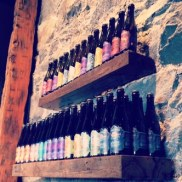 Wicked Weed bottle selection
